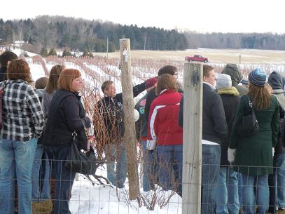 Winter Wine Fest