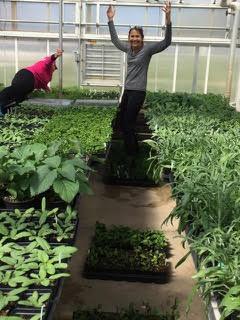 Master Gardeners'Annual Plant Sale