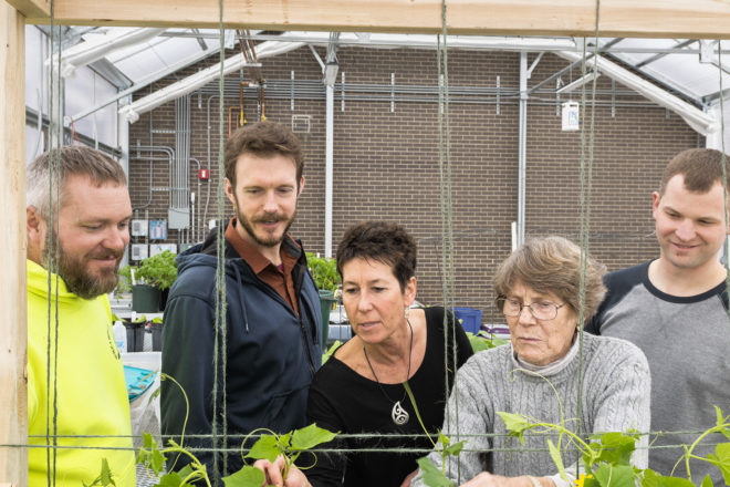 With Greenhouse, Sturgeon Bay Students Dig Into Food Cycle