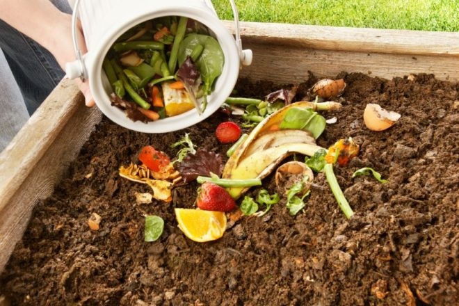 Free, Family-Friendly Composting Class