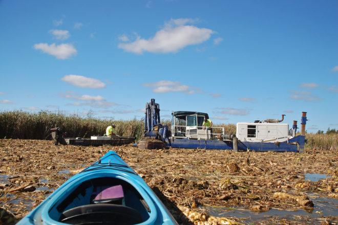 Restoring Dunes Lakes