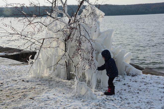 Framed: The Ice Trees of Ephraim