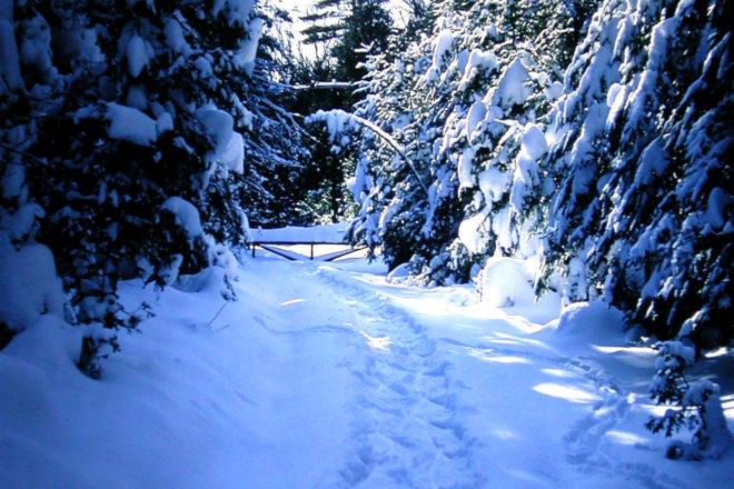 Door to Nature: Door County Snowstorms