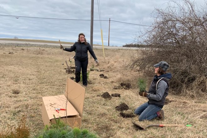 Forest Recovery Project and Climate Change Coalition  Plant 600 Trees