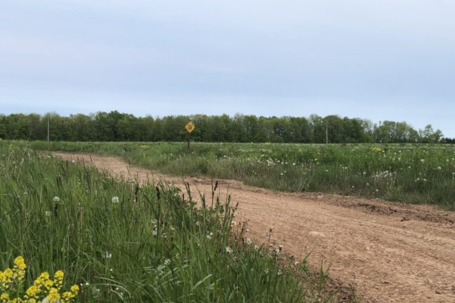Opening of Riverview ATV Park Delayed