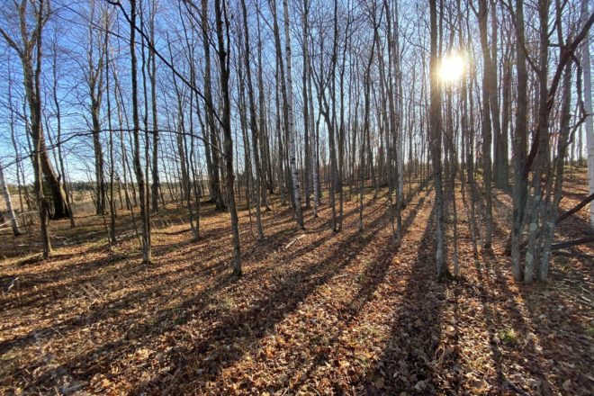 Land Trust Protects 40 Acres with Easement Agreement