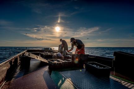 Know Your Fisherman: Henriksen Fisheries