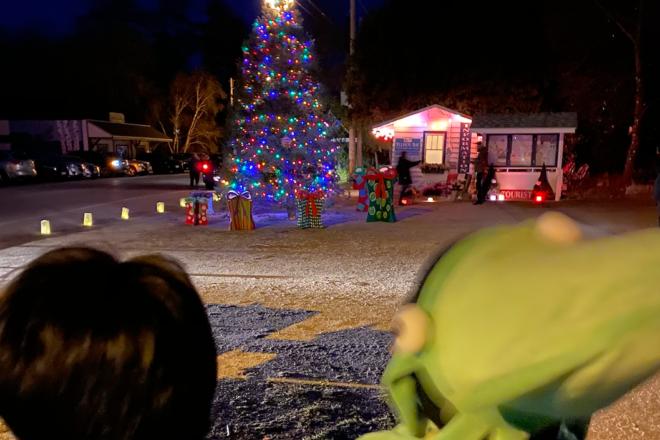 Framed: The Ellison Bay Christmas Tree
