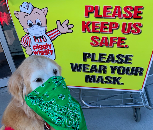 Even Amos the dog could read the signs at the Piggly Wiggly in Sister Bay, which began requiring masks for entry early in the pandemic. Photo by Gloria Dougherty.
