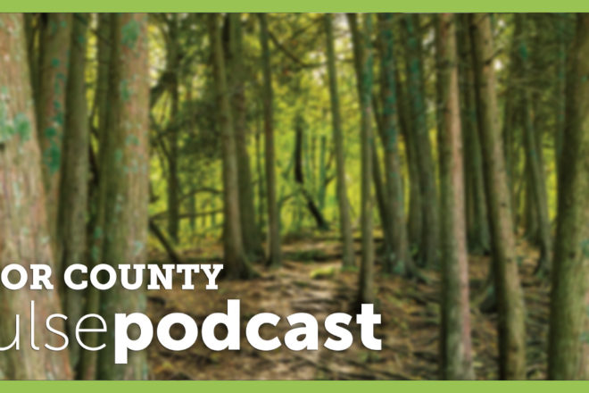 PODCAST: The 2021 Door County Living Magazine Philanthropy Issue