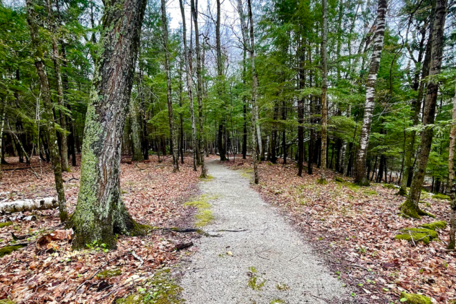 Hike This: The Ancient Shores Trail at Potawatomi State Park