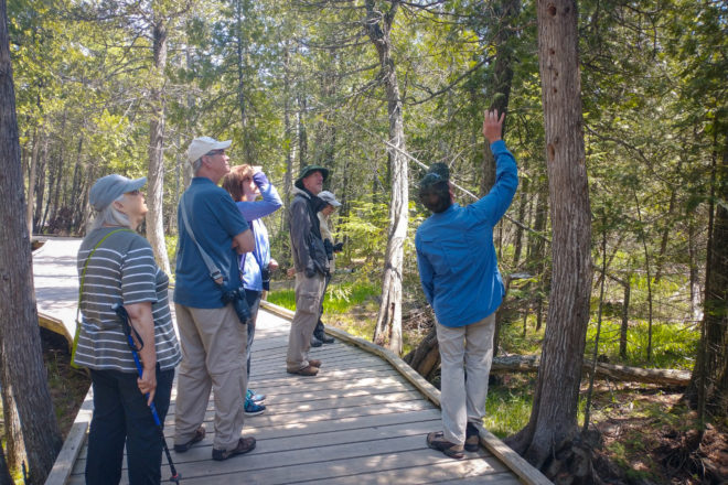 Hike This: A Learning Experience at The Ridges Sanctuary