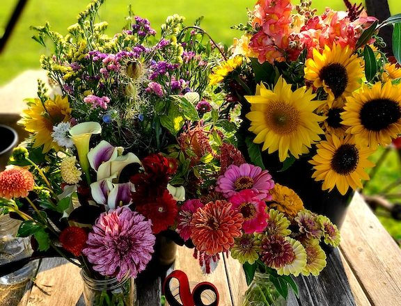 Cut-Your-Own Flowers at OneEighty Petals