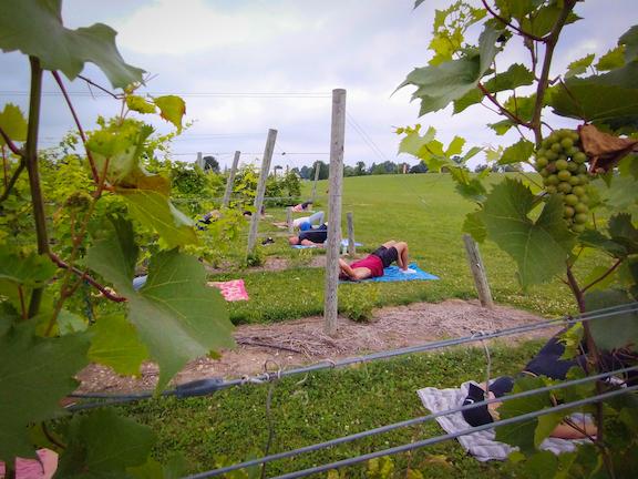 Vinyasa in the Vineyards