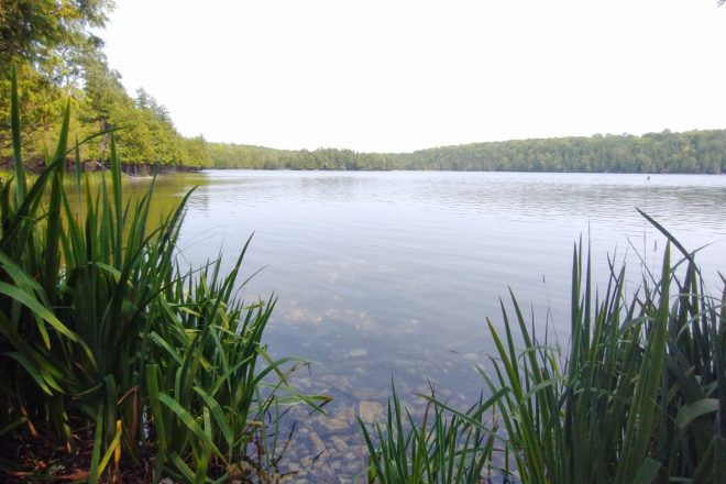 Exploring Washington Island's Natural Wonder