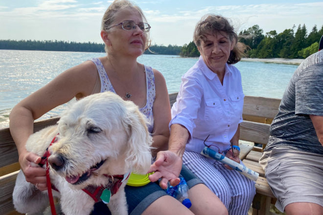 Celebrate National Dog Month in Door County